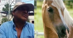 Vídeo: Apresan hombre por tener relación sexual con una Yegua en La Vega