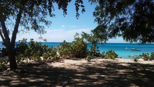 Estado Dominicano ya es dueño de Bahía de las Águilas