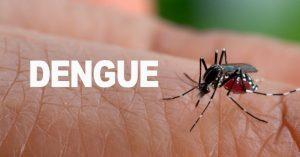 Se elevan a 34 las muertes por dengue y a 40 por leptospirosis