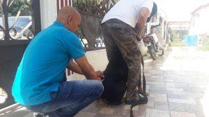 Anuncian jornada de vacunación antirrábica para perros y gatos Dirección de comunicaciones