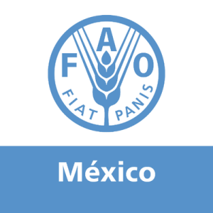 Ve ONU amenaza real en la vulnerabilidad alimentaria de México