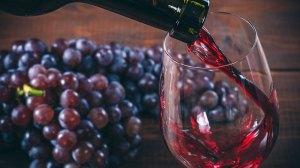 Es mexicano el mejor vino tinto Cabernet, del mundo