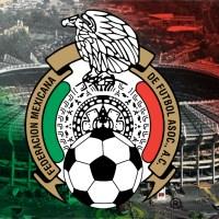 Castiga FIFA a la Selección Mexicana por grito homofóbico