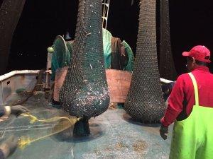 Asegura Profepa embarcación por pesca ilegal (Twitter @PROFEPA_Mx)