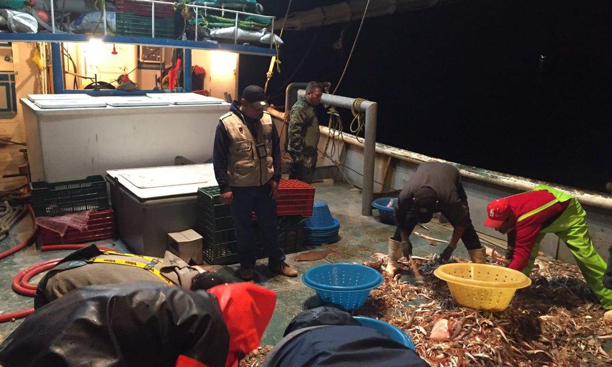 Asegura Semar y Profepa embarcación por pesca ilegal (Twitter @PROFEPA_Mx)