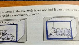 Un libro en la India explica cómo sofocar gatos. (@FIAPOIndia )