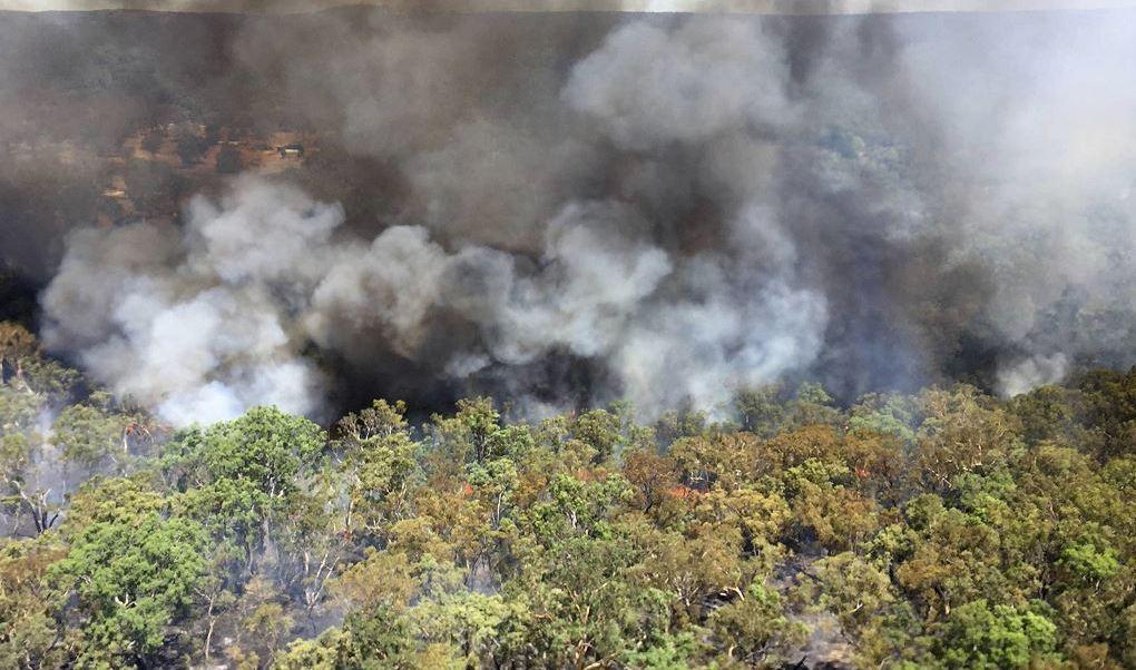Uno de los incendios forestales que arden en N esta foto proporcionada por el servicio de bomberos rural de Nueva Gales del Sur humean olas de un incendio forestal ardiendo cerca de Mudgee, Australia. (AP)