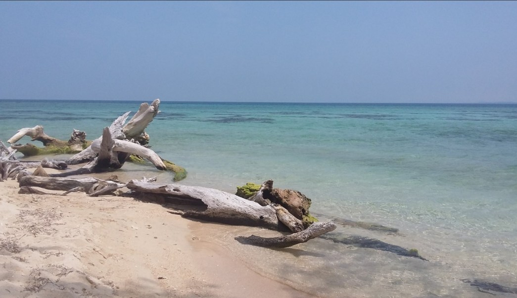 Playa de la Isla de Enmedio, ubicada frente a Antón Lizardo, Veracruz; la zona cuenta con arenas blancas y aguas color turquesa (Twitter @pokymeteor)