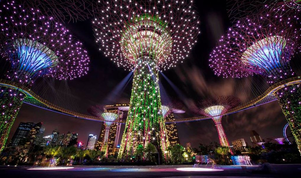 'Súper árboles' de energía solar del Jardín Botánico de Singapur. (Twitter@rcnmundo)