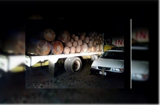 Vehículo asegurado con madera en el santuario de la mariposa Monarca; personal de la Profepa y Gendarmería realizan el operativo (Profepa)