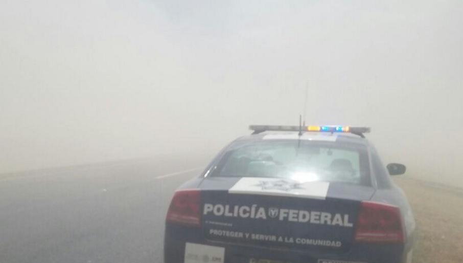 Policía Federal. ((Twitter: PoliciaFedMx/Archivo)