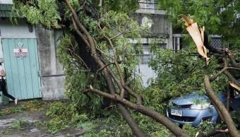 Un automóvil permanece cubierto por un árbol caído en Montevideo, Uruguay, debido al viento que ha generado destrozos en la ciudad (AP)