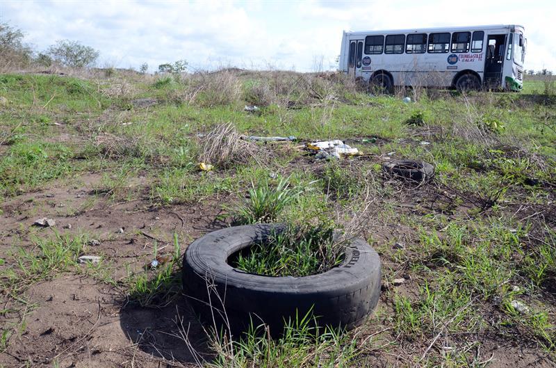 Zona donde elementos de la Fiscalía de Veracruz encontraron más de 250 cráneos humanos, de acuerdo con investigaciones de la Policía Federal e integrantes del Colectivo Solecito, en el predio Colinas de Santa Fe, en Veracruz. (EFE)