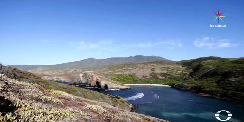 El Archipiélago de Revillagigedo es un santuario natural para cientos de especies marinas y terrestres. (Noticieros Televisa)