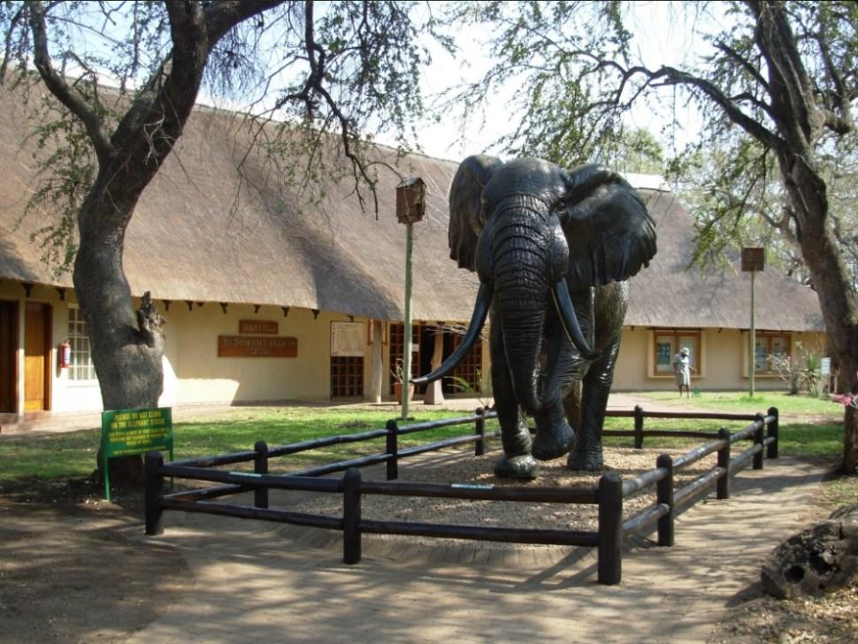 Estancia del Parque Nacional Kruger en Sudáfrica; una empleada de la reserva muere por ataque de elefantes (Twitter @SANParksKNP, archivo)
