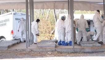 Desde que iniciaron los trabajos de exhumación en el panteón de Jojutla, los peritos encontraron distintas irregularidades en los cuerpos enterrados en la fosa común. (Twitter: @GobiernoMorelos)