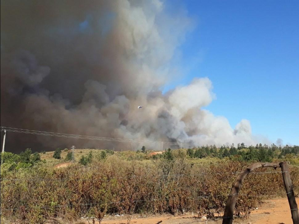 Incendio causa columnas de humo en Valparaíso, Chile; el fuego amenaza zonas residenciales (Twitter @angelacamilo12)
