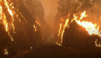 Los municipios con más afectación son Tepoztlán, Huitzilac y Cuernavaca (Twitter/@DiariodeMorelos)
