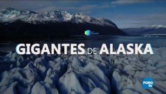 Por el Planeta: Gigantes de Alaska