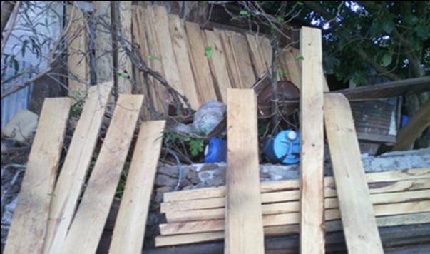 Profepa asegura madera; la dependencia participa en operativo internacional conjunto con la Interpol (Twitter @PROFEPA_Mx)