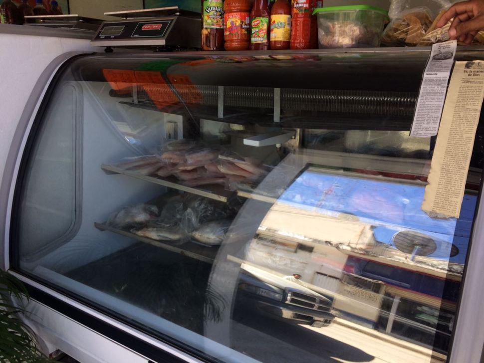 Autoridades de San Luis Potosí inspeccionan establecimientos para prevenir enfermedades gastrointestinales durante la temporada de calor (slpsalud.gob.mx)