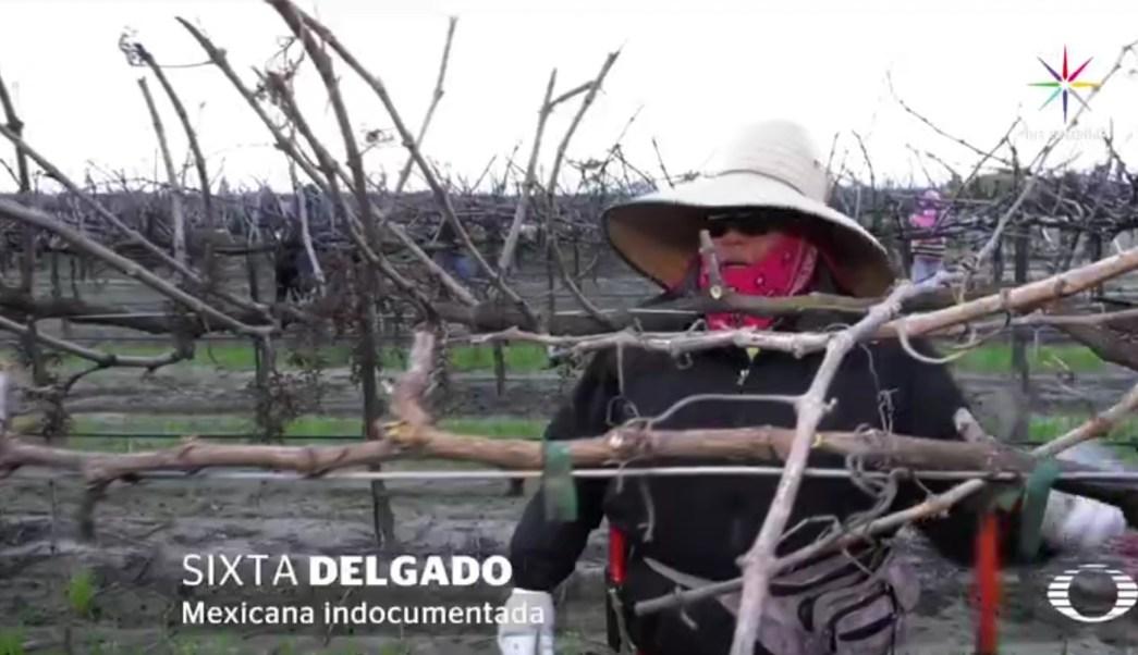 Sixta es originaria de Arcelia, en la Tierra Caliente de Guerrero. (Noticieros Televisa)