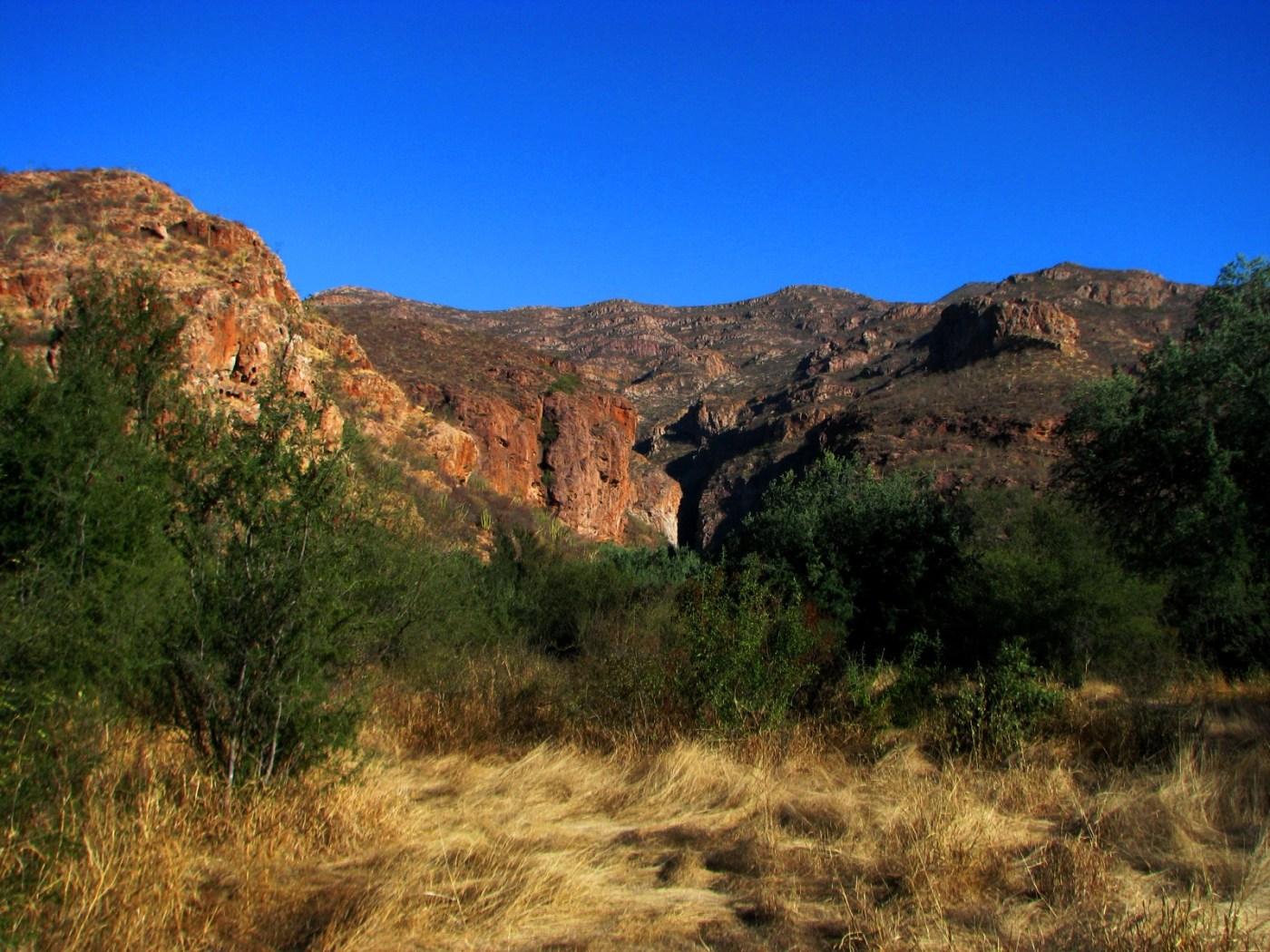 Sonora es un laboratorio natural para geólogos; cuenta con rocas de todas las eras (NTX, archivo)