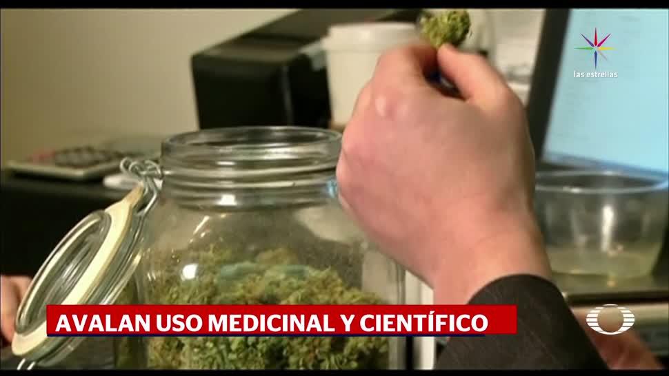 Marihuana, Uso Medicional, Diputados, Aprueban, Ley general de salud,