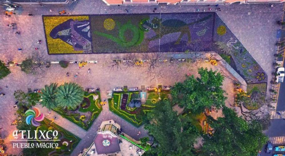 Atlixco recibe a visitantes con tapete floral monumental