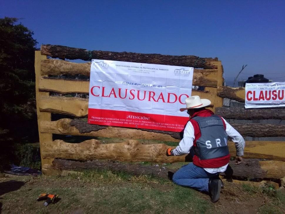 Clausuran nueve aserraderos ilegales en Milpa Alta. (Twitter @PROFEPA_Mx)