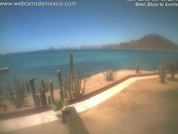 A lo largo de los 20 kilómetros de playa, los visitantes pueden disfrutar de la fina arena, aves migratorias, dunas, y actividades como el senderismo (Twitter/@webcamsdemexico)
