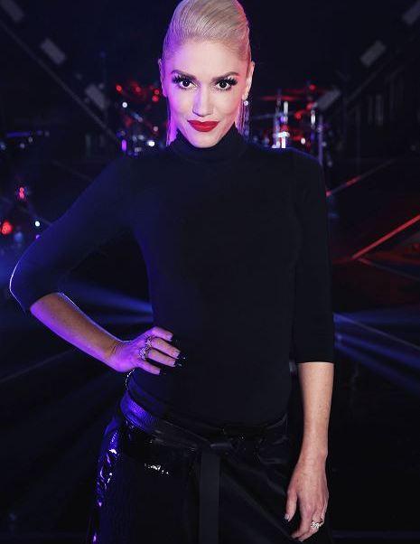 Cantante, Gwen Stefani, ruptura, timpano, cancela, presentacion