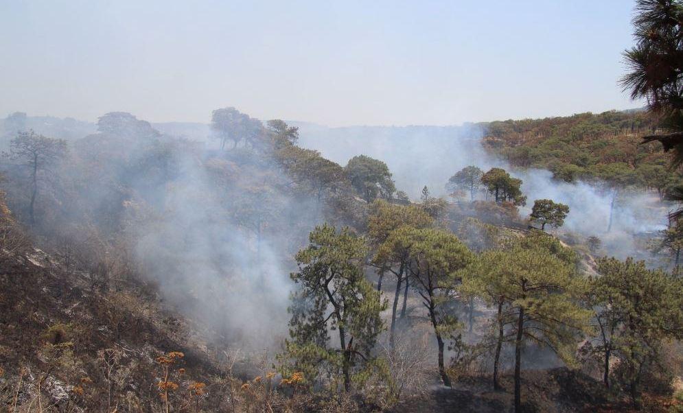 Esta vez el fuego se presentó en la parte que colinda con Santa Ana Tepetitlán (Twitter/@UMPCyBZ)