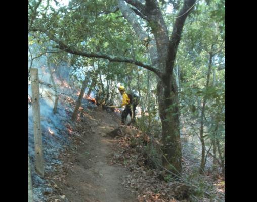 De acuerdo con autoridades de Protección Civil, la mayoría de los incendios son provocados por el hombre. (Twitter@CONAFOR)