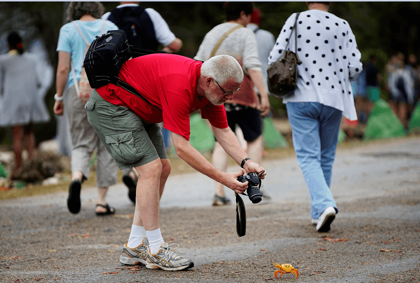 Los turistas aprovechan para fotografiar a los cangrejos. (Reuters)