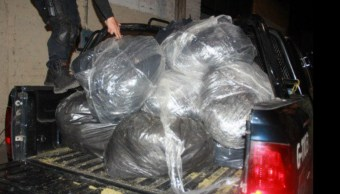 Autoridades de Guadalajara aseguraron 123 kilogramos de marihuana que estaban ocultos en un lote baldío (Twitter @PoliciaGDL)