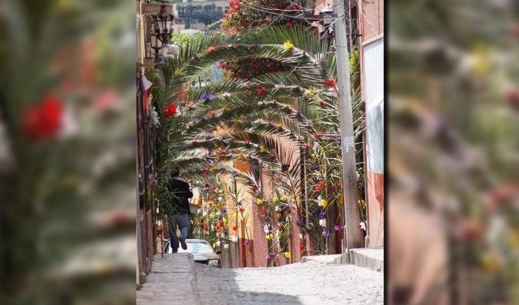 Adornan calles de San Miguel de Allende para la celebración del Domingo de Ramos (Twitter @OnarresA)
