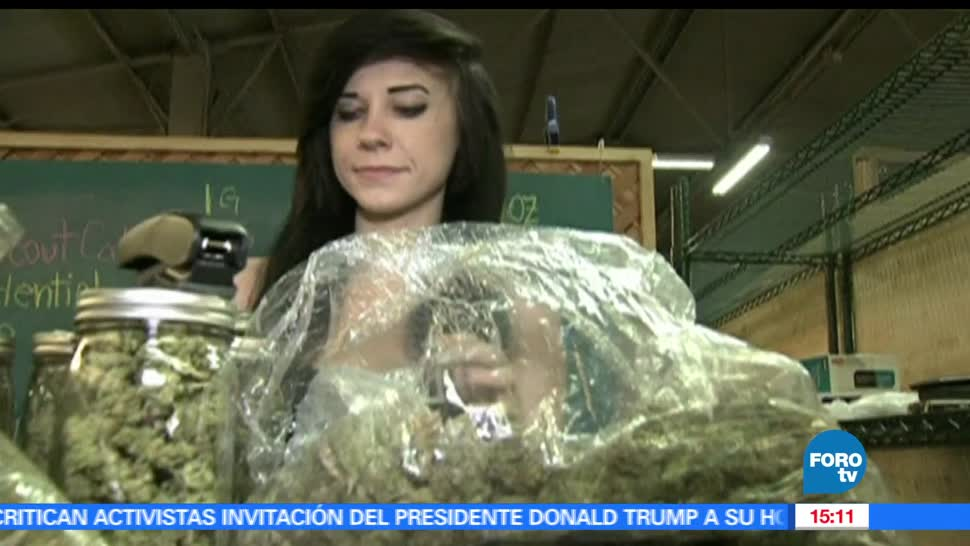 marihuana, Doctora Diane Pérez, fines medicinales, beneficios