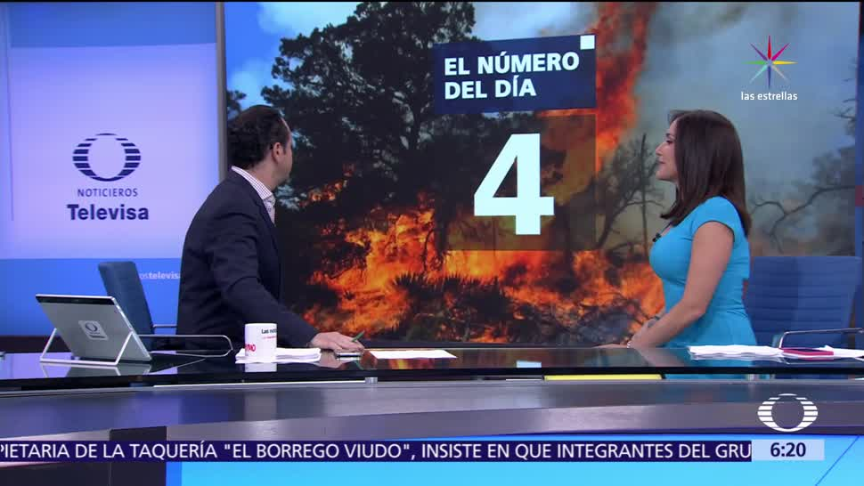 Incendios, bosques, Estado de México, naturaleza