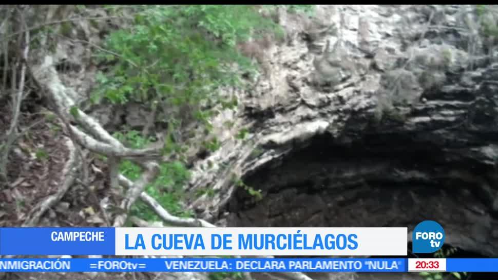 noticias, teelvisa news, Cueva, murcielagos, Calakmul, campeche