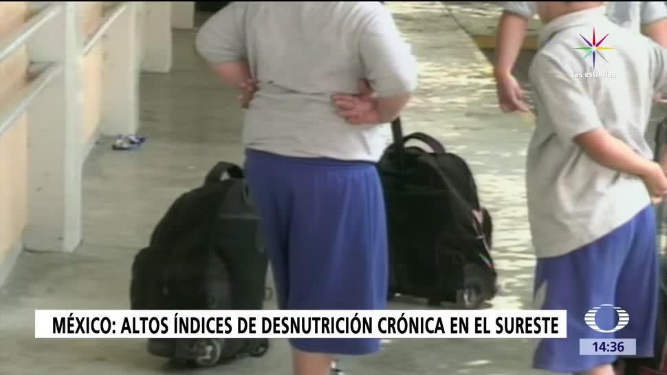 México, niños con obesidad, obesidad infantil, desnutrición crónica