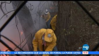 incendios, Valle de Bravo, alcalde, Mauricio Osorio Domínguez