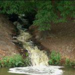 noticias, televisa news, Danos ecologicos, ordena de ductos, huachicoleros, Hidalgo