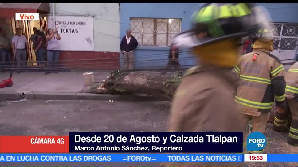 Árbol, caída, autos, CDMX, lluvia, Clima, Tlalpán
