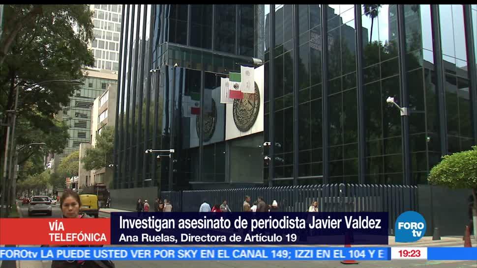 Artículo 19, mpunidad en México, Ana Ruelas, agresiones contra la prensa