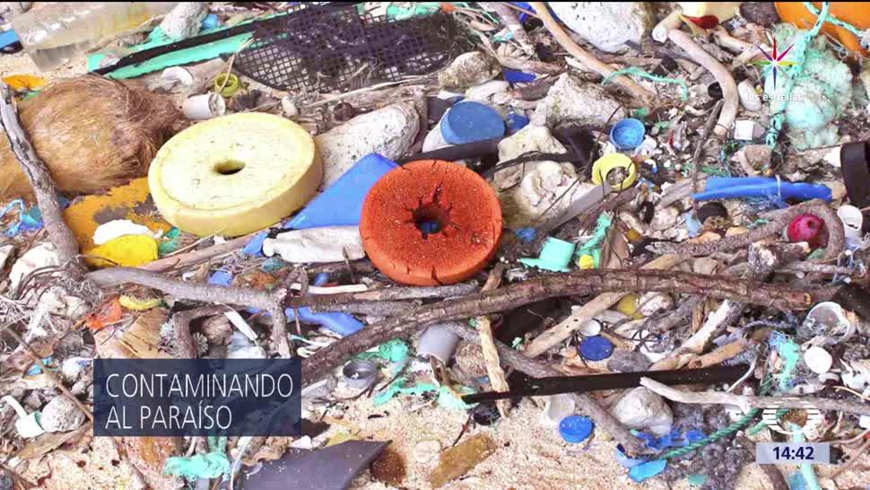 noticias, televisa news, Toneladas, basura, isla Henderson, Patrimonio de la Humanidad