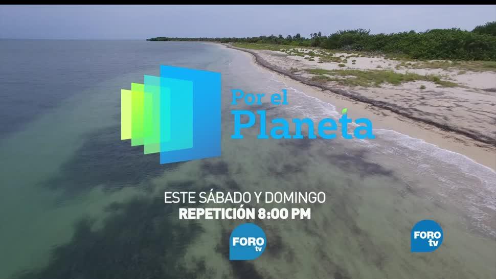 noticias, forotv, Promo, Cuba salvaje, por el planeta, FOROtv