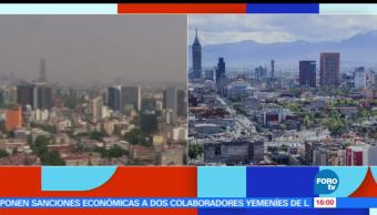 noticias, forotv, Tanya Muller, polemica, tuit, politicas ambientales