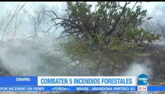 Equipos de emergencia, combaten, incendios forestales, Chiapas, activos, bomberos