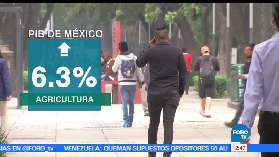 INEGI, PIB mexicano, aumentó, 2016